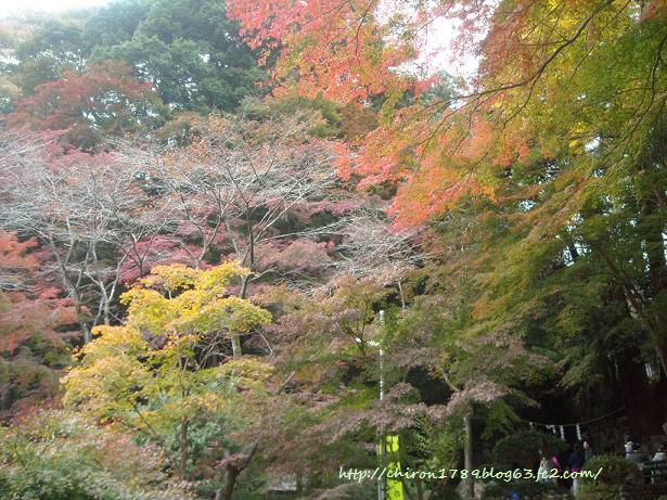 2010年高尾山パート3-最後