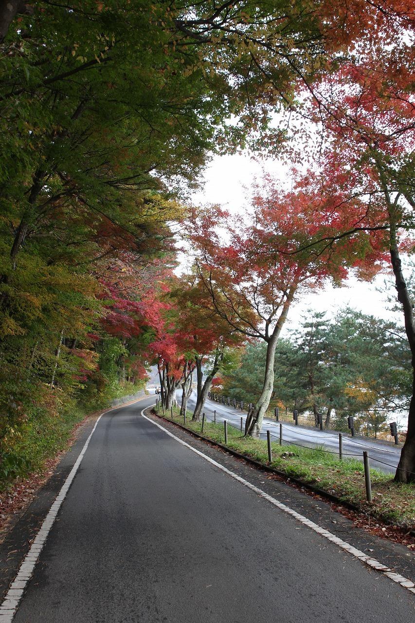 shuku-IMG_7844.jpg