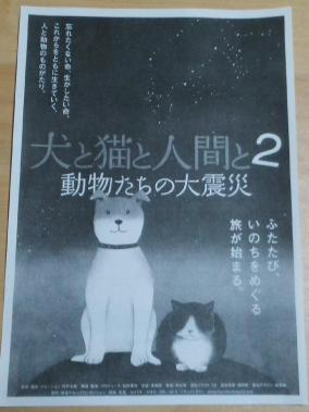 犬と猫と人間と2-1