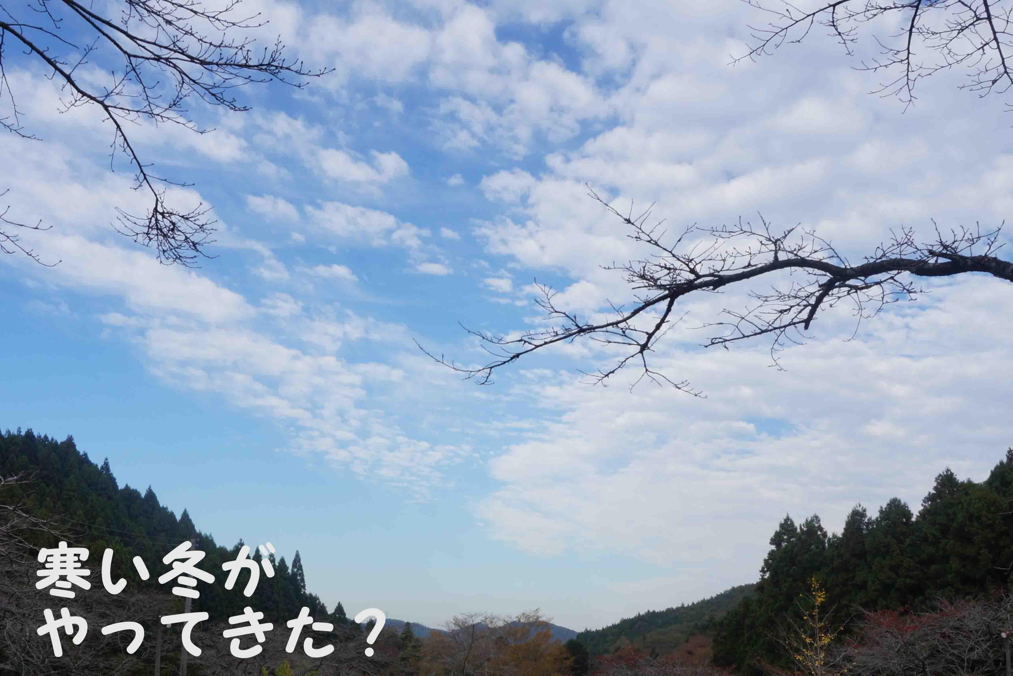 201411051759567ce.jpg