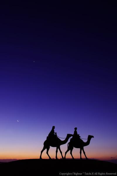 空と星そして駱駝