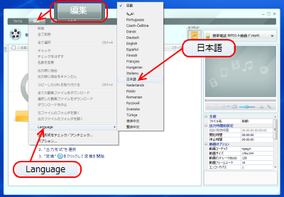 Any Video Converter日本語化