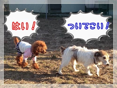 2013_01_11_04.jpg