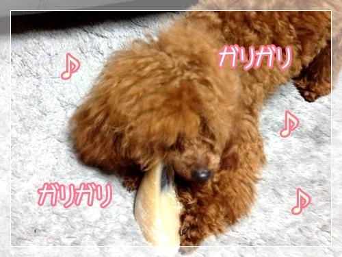 2013_01_17_01.jpg