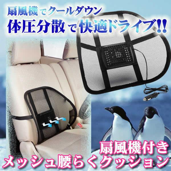 fan-cushion-1.jpg