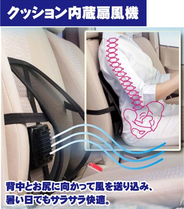 fan-cushion-2.jpg