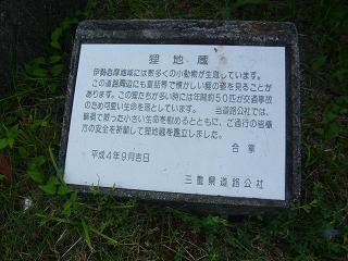 t-jizo2.jpg