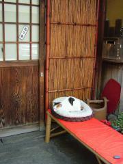 tokyo2006_0525_101705AA.jpg