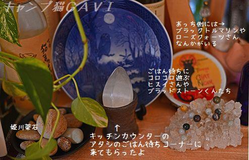 1410_8840.jpg
