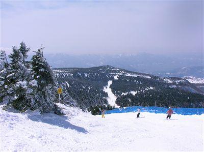 201003山形蔵王5
