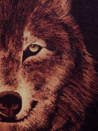 wolf 2010 12 4 (3)