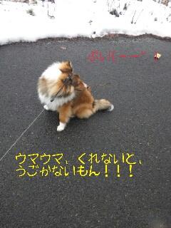 2013-01-28-13-48-10_deco.jpg