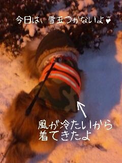 2013-01-28-14-37-39_deco.jpg