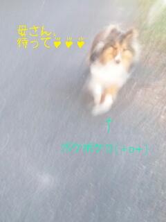 2013-03-12-20-31-26_deco.jpg