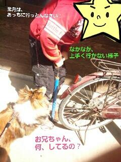 2013-03-22-14-35-03_deco.jpg