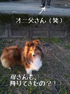 2013-04-12-18-24-06_deco.jpg