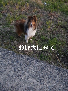 2013-04-12-18-25-03_deco.jpg