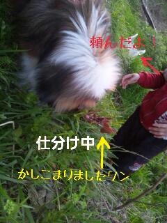2013-04-25-12-15-21_deco.jpg