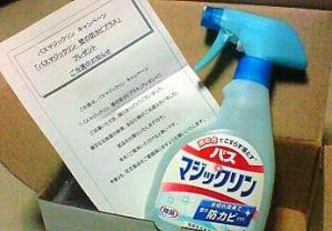 NEC_0022_20100523163218.jpg