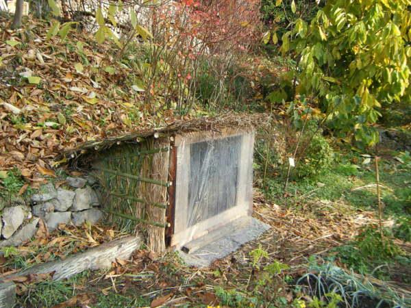 ネギ小屋4