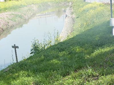 元荒川 釣り人