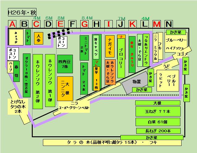 141028 畑の配置