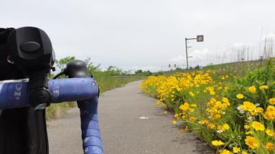 1504自転車道1