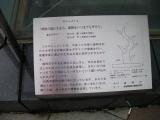 JR盛岡駅 清流の流れるまち、盛岡をいつまでも守ろう 説明