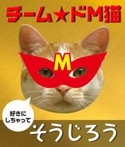 Msouweb_ed.jpg