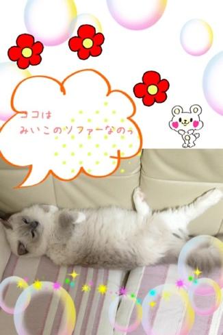 fc2blog_201310221029366ff.jpg
