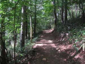 2011山6