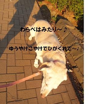 DSCF3214.jpg