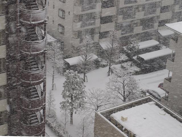 雪景色~♪