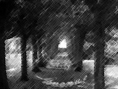 林荫路HP