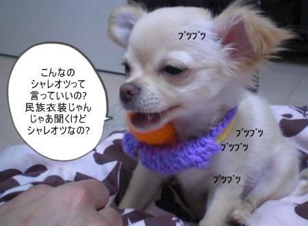 new_CIMG2674.jpg