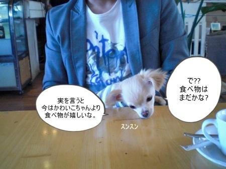 new_CIMG2697.jpg