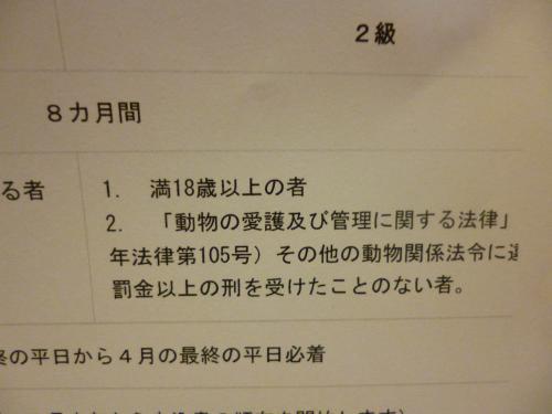 P1020881_convert_20130206093438.jpg