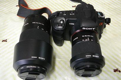 P1030420.jpg