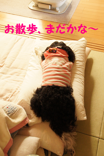 20130618142607b67.png