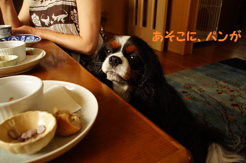 20130627155516a3f.png