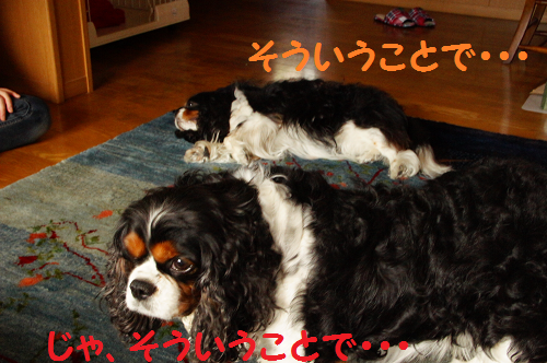20130627155658f8a.png