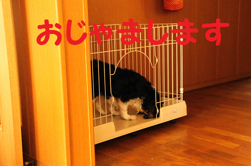 20130627155701b09.png