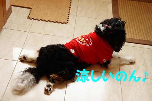 201308141426062b9.png