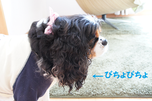 20130824085432bb2.png