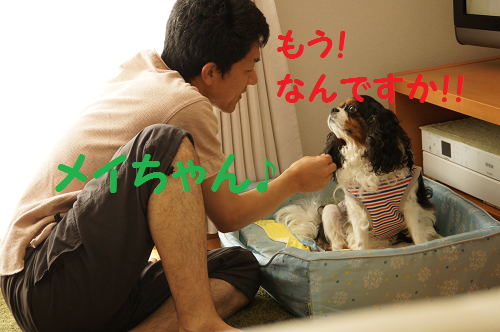 20130909180831eb4.png