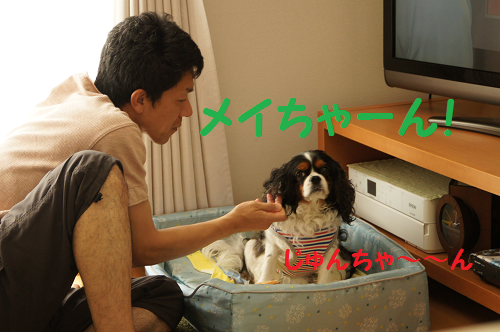 20130909180832209.png