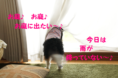 2013091216381748f.png