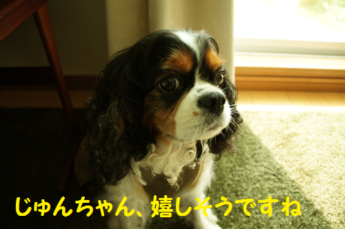 20130919114203963.png