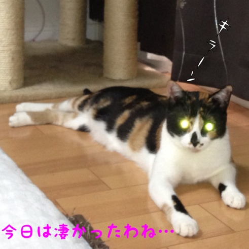 fc2blog_20130813235143797.jpg