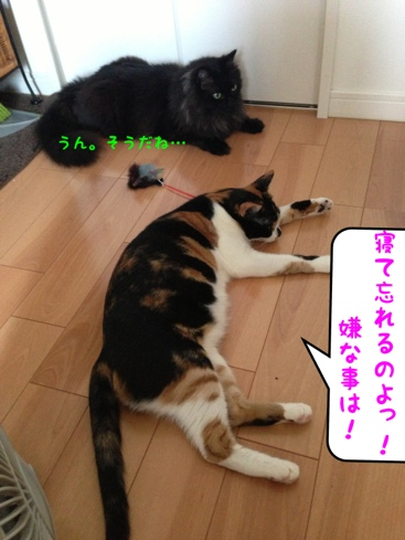 fc2blog_20130821030245aae.jpg